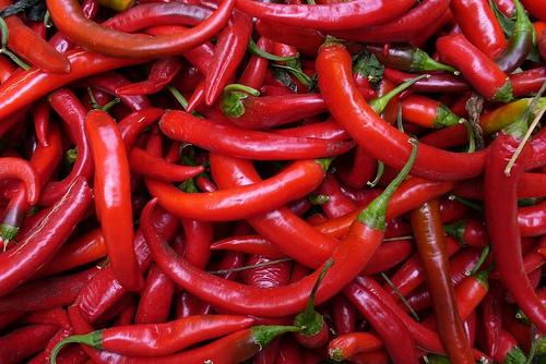 Cultiver des piments